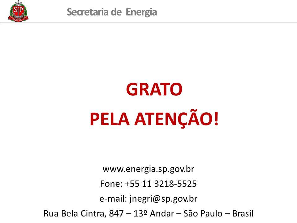 GRATO PELA ATENÇÃO! www.energia.sp.gov.br Fone: +55 11 3218-5525