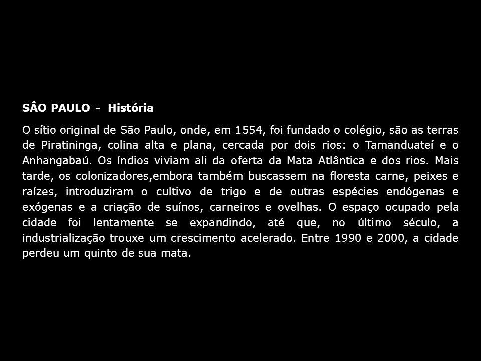 SÂO PAULO - História