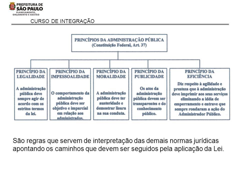 São regras que servem de interpretação das demais normas jurídicas apontando os caminhos que devem ser seguidos pela aplicação da Lei.
