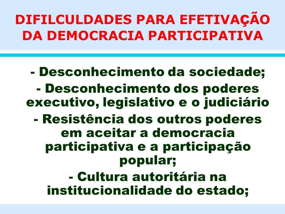 DIFILCULDADES PARA EFETIVAÇÃO DA DEMOCRACIA PARTICIPATIVA