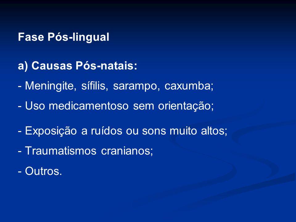 Fase Pós-lingual a) Causas Pós-natais: - Meningite, sífilis, sarampo, caxumba; - Uso medicamentoso sem orientação;