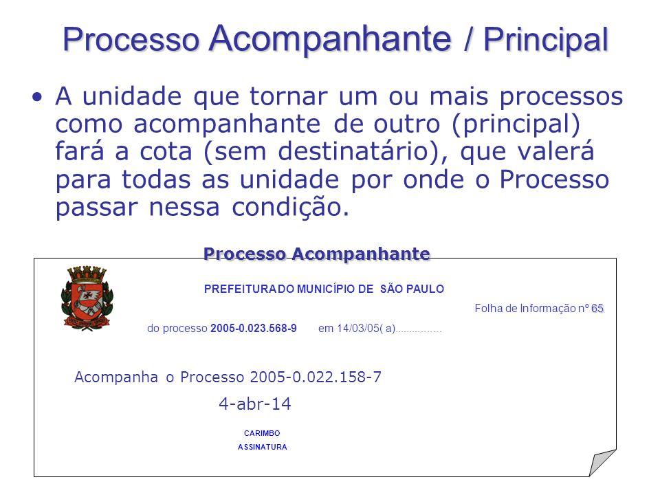 Processo Acompanhante / Principal