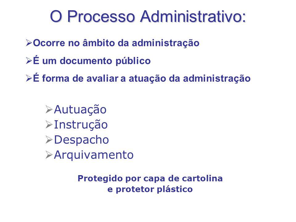 O Processo Administrativo: