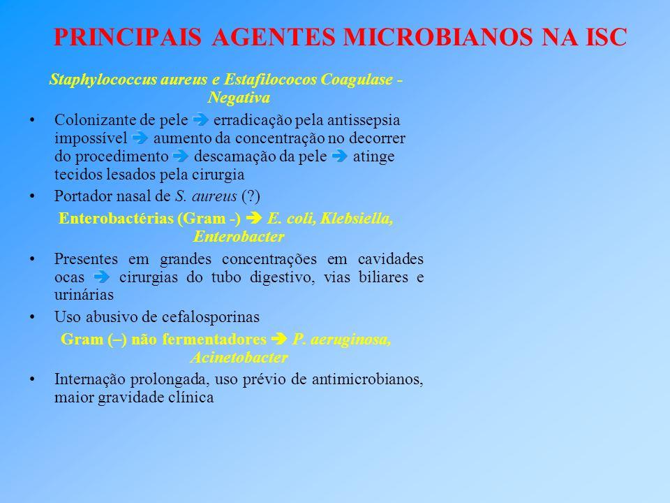 PRINCIPAIS AGENTES MICROBIANOS NA ISC