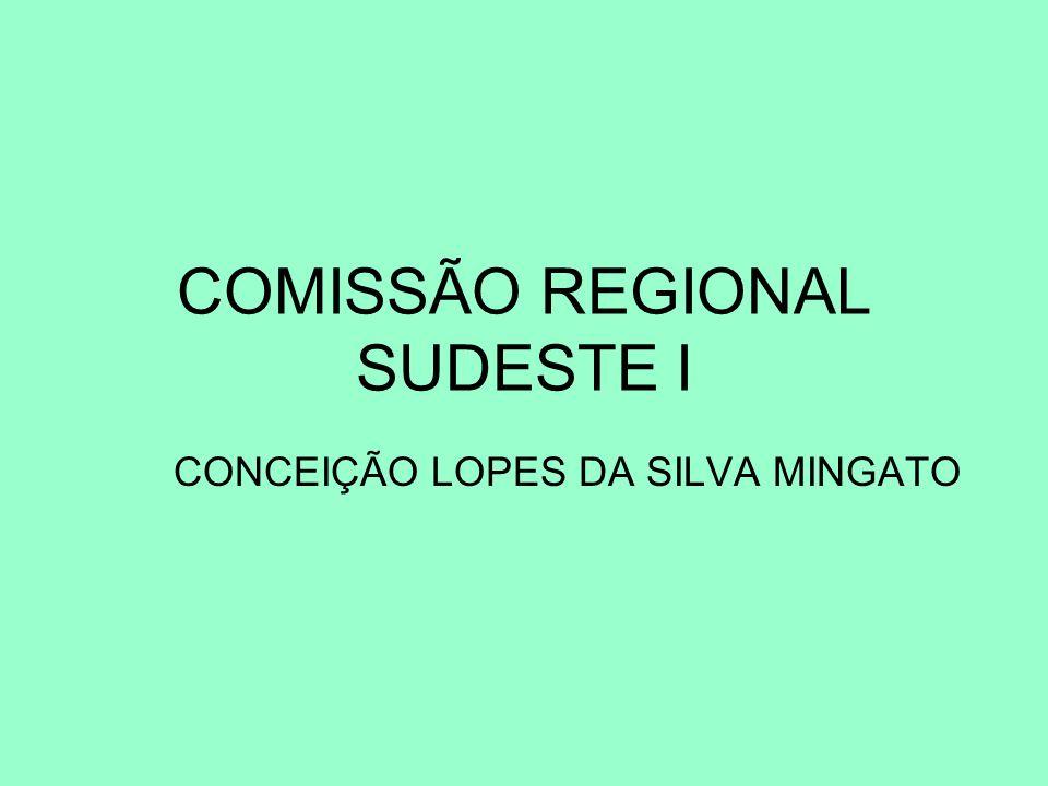 COMISSÃO REGIONAL SUDESTE I