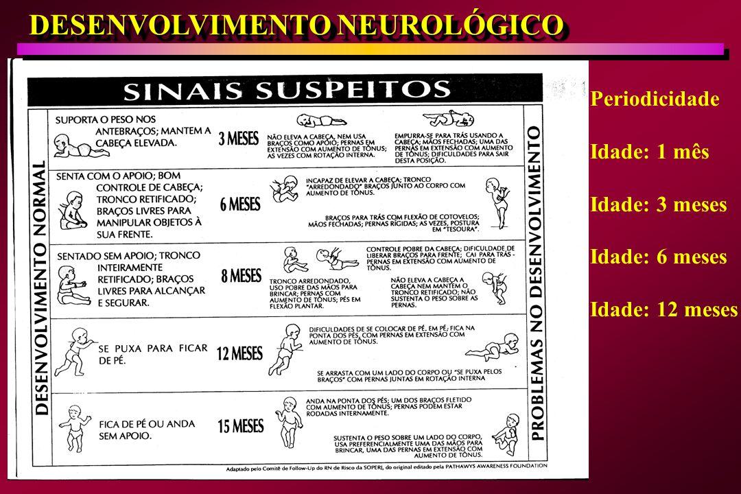 DESENVOLVIMENTO NEUROLÓGICO