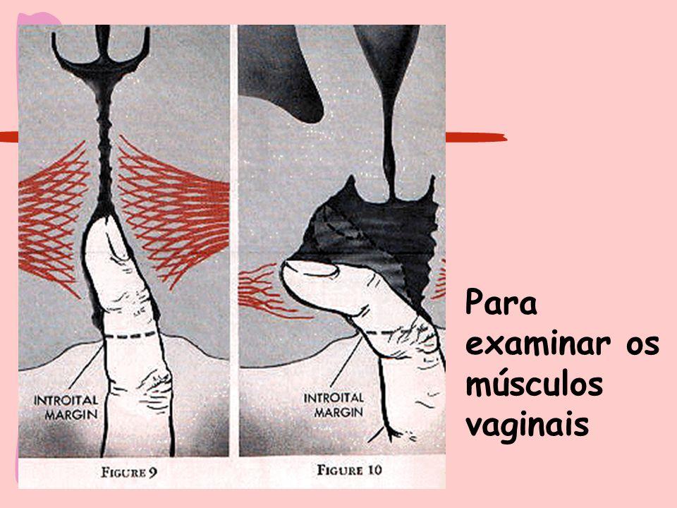 Para examinar os músculos vaginais