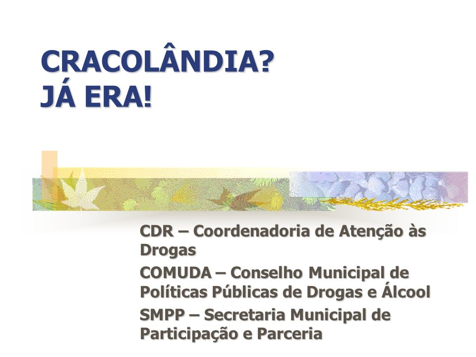 CRACOLÂNDIA JÁ ERA! CDR – Coordenadoria de Atenção às Drogas