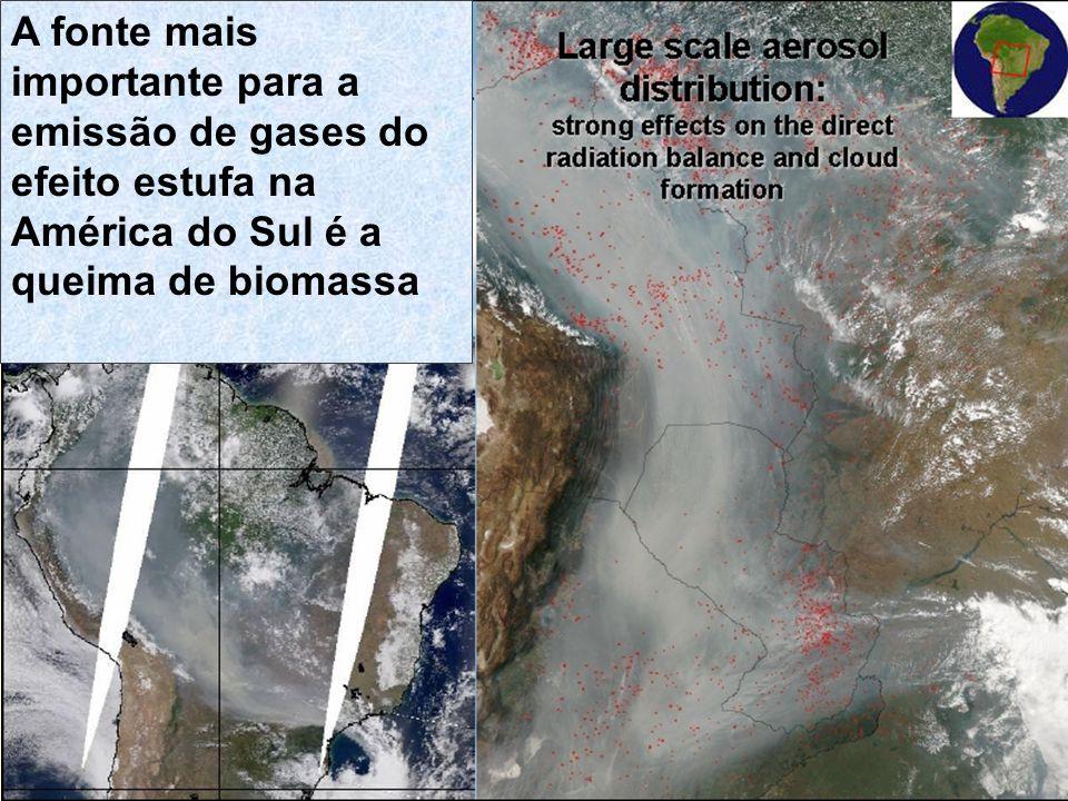 A fonte mais importante para a emissão de gases do efeito estufa na América do Sul é a queima de biomassa