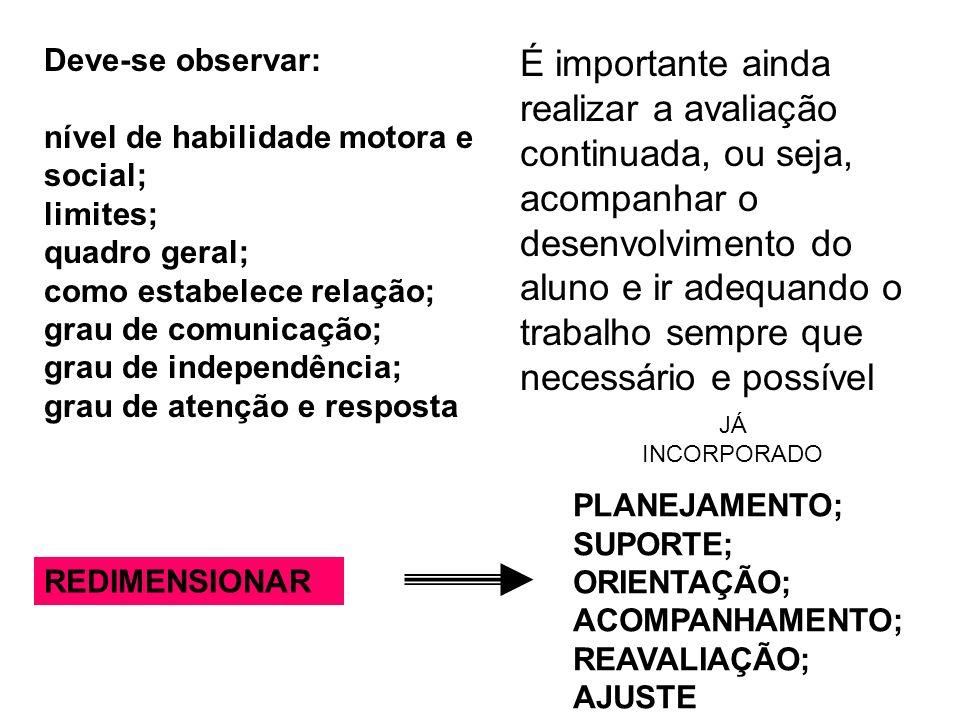 Deve-se observar: nível de habilidade motora e social; limites; quadro geral; como estabelece relação;