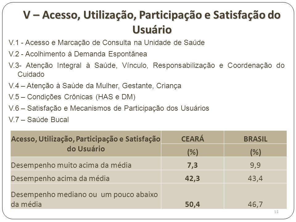 V – Acesso, Utilização, Participação e Satisfação do Usuário