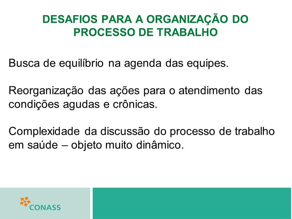 DESAFIOS PARA A ORGANIZAÇÃO DO PROCESSO DE TRABALHO