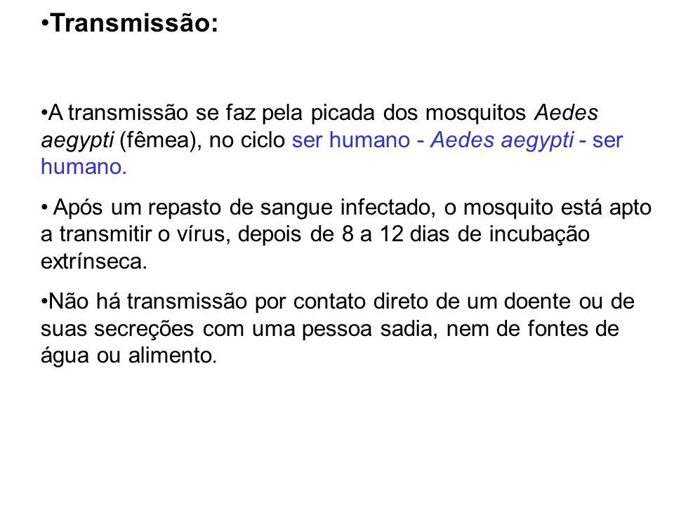 Transmissão: A transmissão se faz pela picada dos mosquitos Aedes aegypti (fêmea), no ciclo ser humano - Aedes aegypti - ser humano.