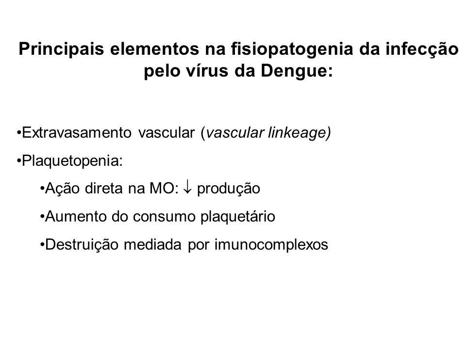 Principais elementos na fisiopatogenia da infecção pelo vírus da Dengue: