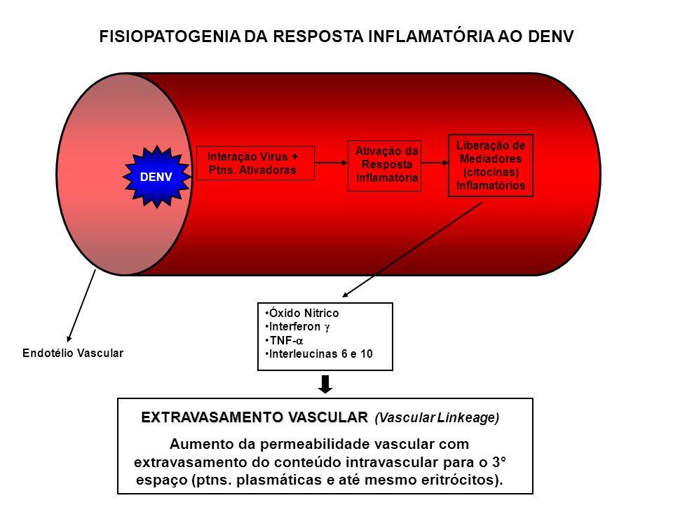 FISIOPATOGENIA DA RESPOSTA INFLAMATÓRIA AO DENV