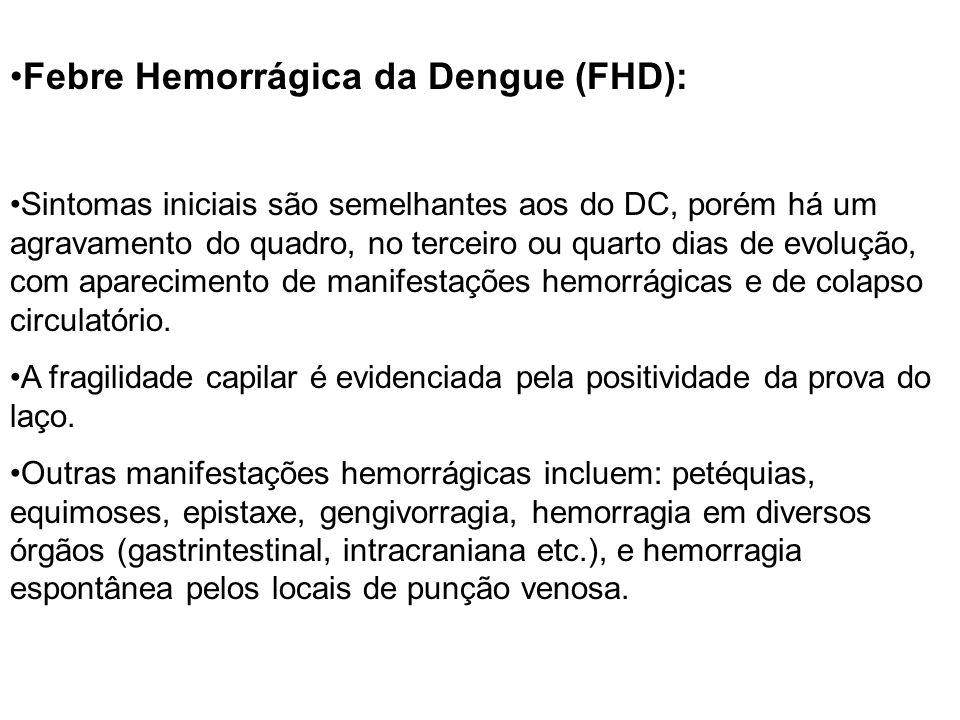 Febre Hemorrágica da Dengue (FHD):