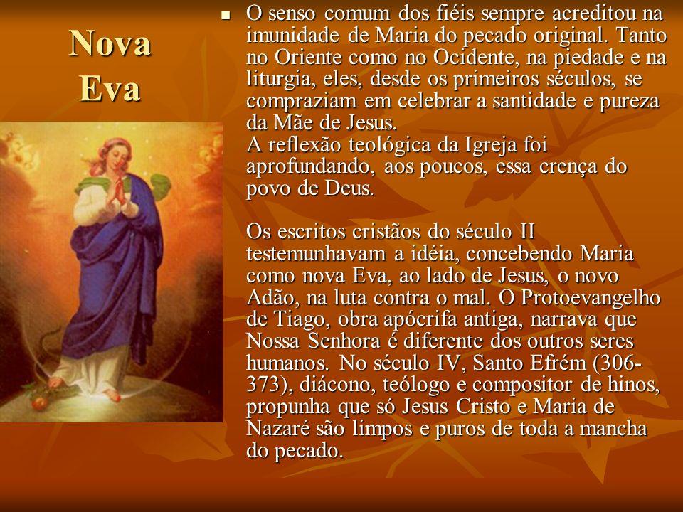 O senso comum dos fiéis sempre acreditou na imunidade de Maria do pecado original. Tanto no Oriente como no Ocidente, na piedade e na liturgia, eles, desde os primeiros séculos, se compraziam em celebrar a santidade e pureza da Mãe de Jesus. A reflexão teológica da Igreja foi aprofundando, aos poucos, essa crença do povo de Deus. Os escritos cristãos do século II testemunhavam a idéia, concebendo Maria como nova Eva, ao lado de Jesus, o novo Adão, na luta contra o mal. O Protoevangelho de Tiago, obra apócrifa antiga, narrava que Nossa Senhora é diferente dos outros seres humanos. No século IV, Santo Efrém (306-373), diácono, teólogo e compositor de hinos, propunha que só Jesus Cristo e Maria de Nazaré são limpos e puros de toda a mancha do pecado.