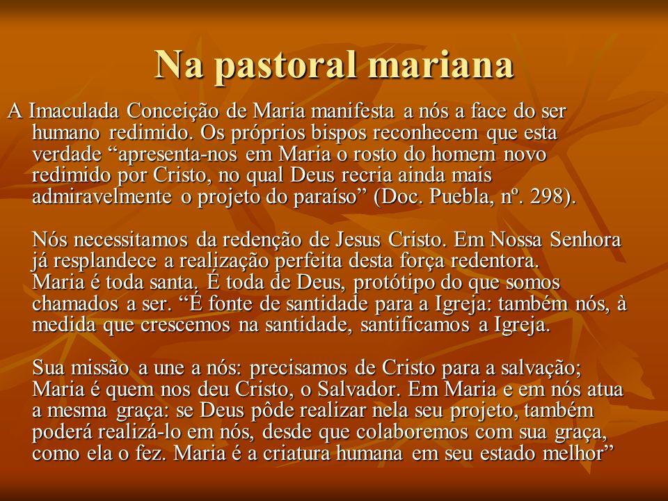 Na pastoral mariana