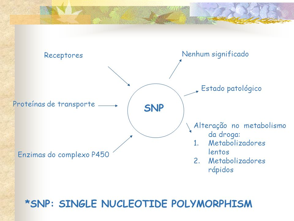 *SNP: SINGLE NUCLEOTIDE POLYMORPHISM