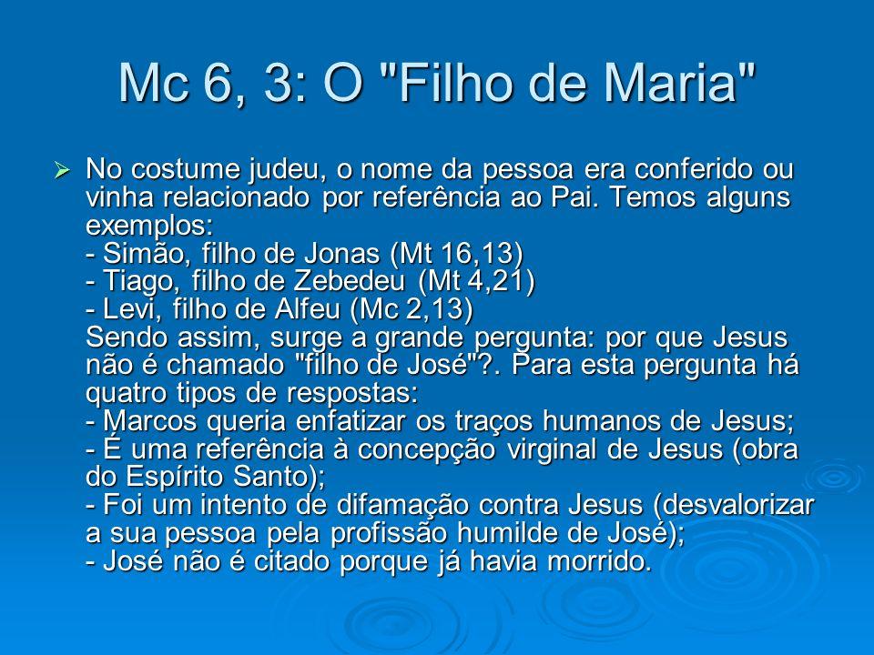 Mc 6, 3: O Filho de Maria