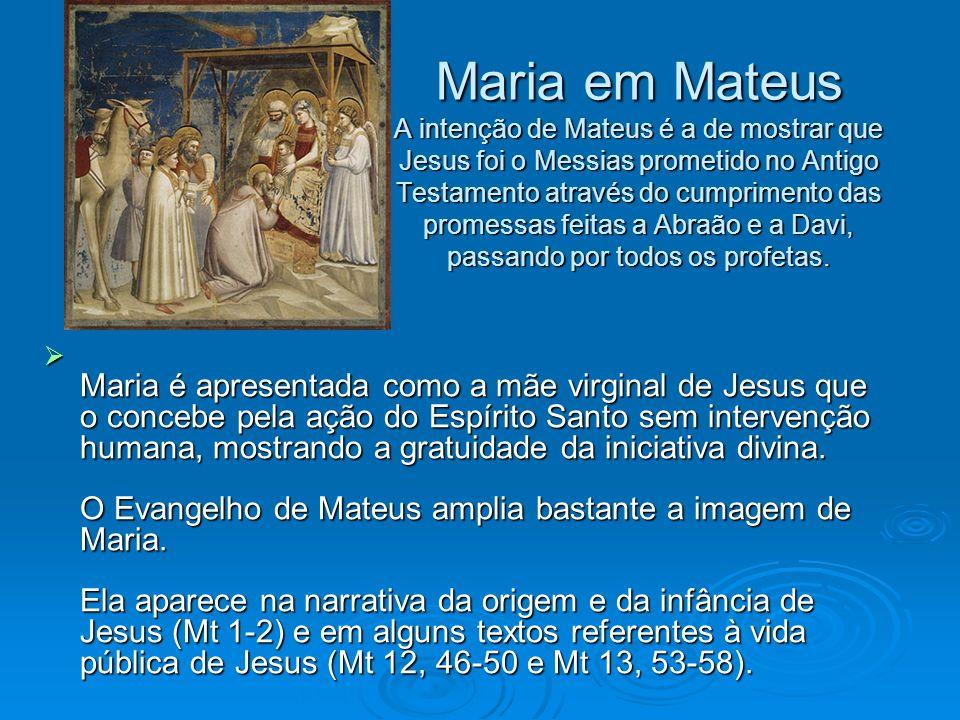 Maria em Mateus A intenção de Mateus é a de mostrar que Jesus foi o Messias prometido no Antigo Testamento através do cumprimento das promessas feitas a Abraão e a Davi, passando por todos os profetas.