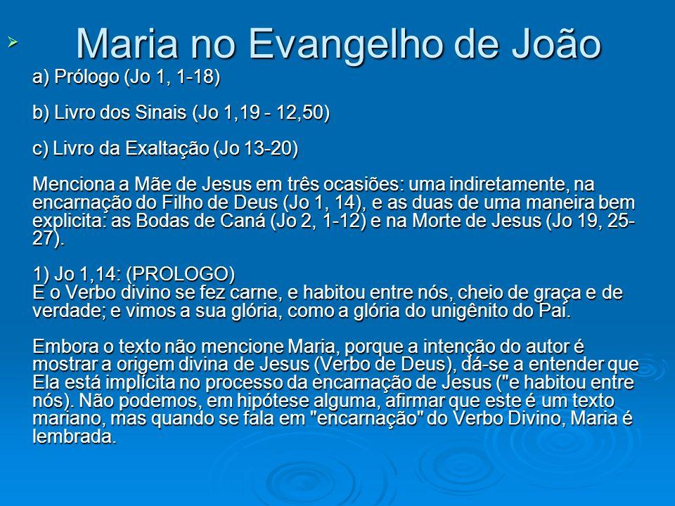 Maria no Evangelho de João
