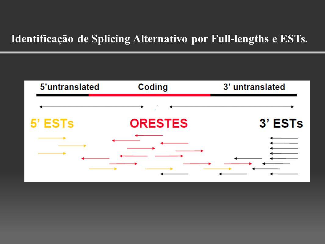 Identificação de Splicing Alternativo por Full-lengths e ESTs.