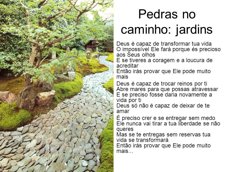 Pedras no caminho: jardins