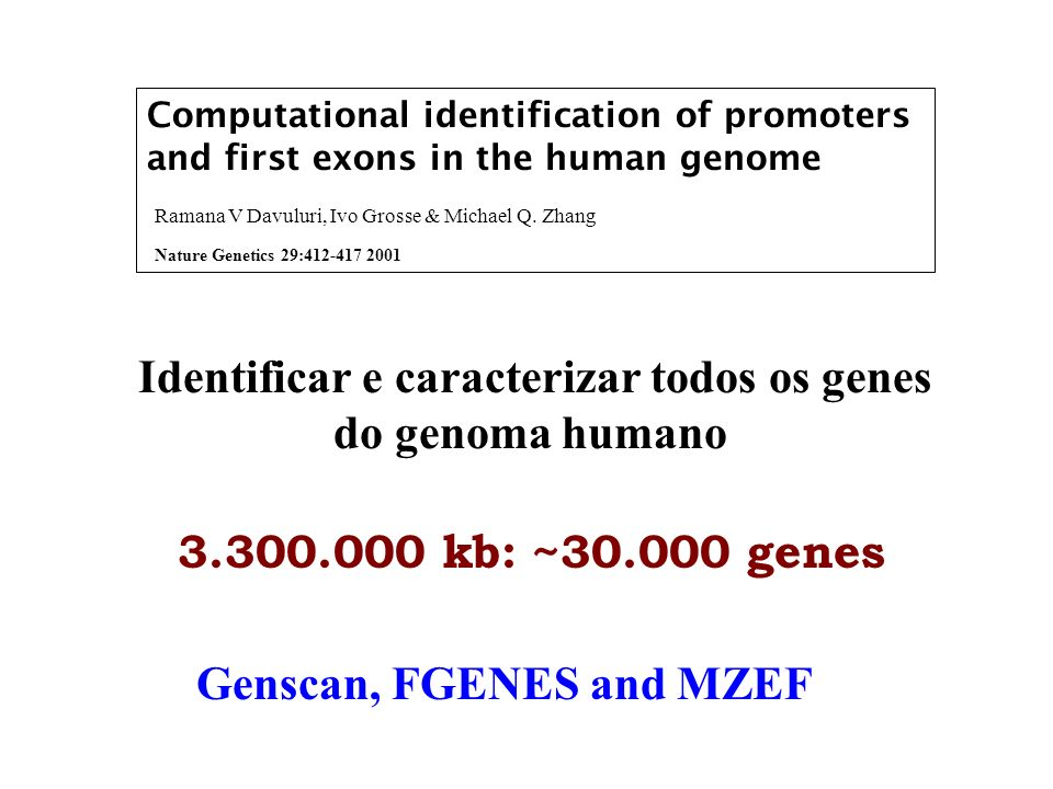 Identificar e caracterizar todos os genes Genscan, FGENES and MZEF