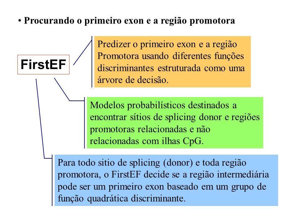 FirstEF Procurando o primeiro exon e a região promotora