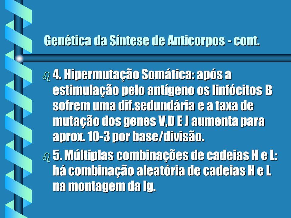Genética da Síntese de Anticorpos - cont.