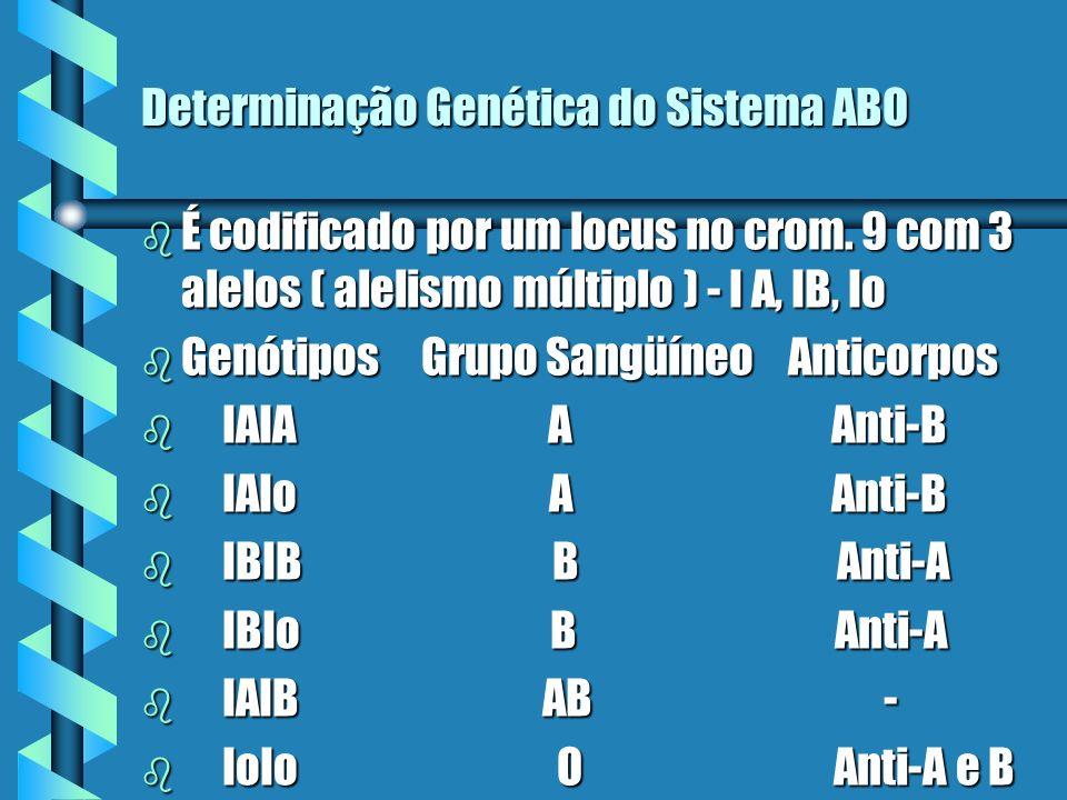 Determinação Genética do Sistema ABO