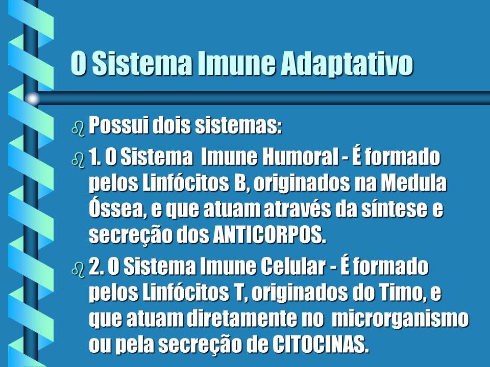 O Sistema Imune Adaptativo