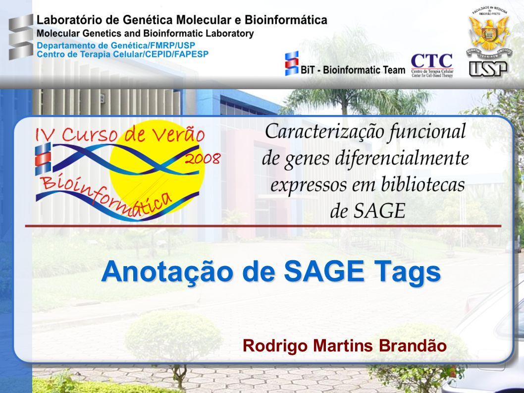 Anotação de SAGE Tags Rodrigo Martins Brandão