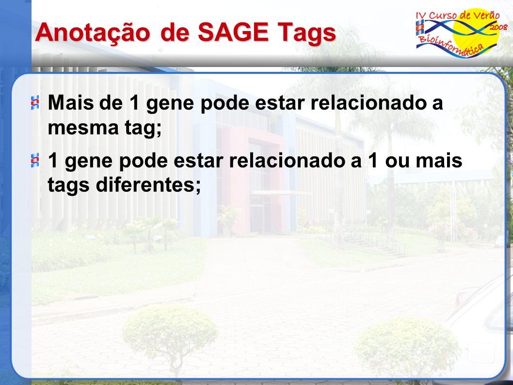 Anotação de SAGE Tags Mais de 1 gene pode estar relacionado a mesma tag; 1 gene pode estar relacionado a 1 ou mais tags diferentes;