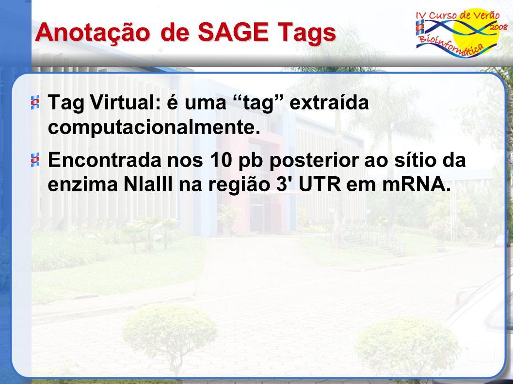 Anotação de SAGE Tags Tag Virtual: é uma tag extraída computacionalmente.