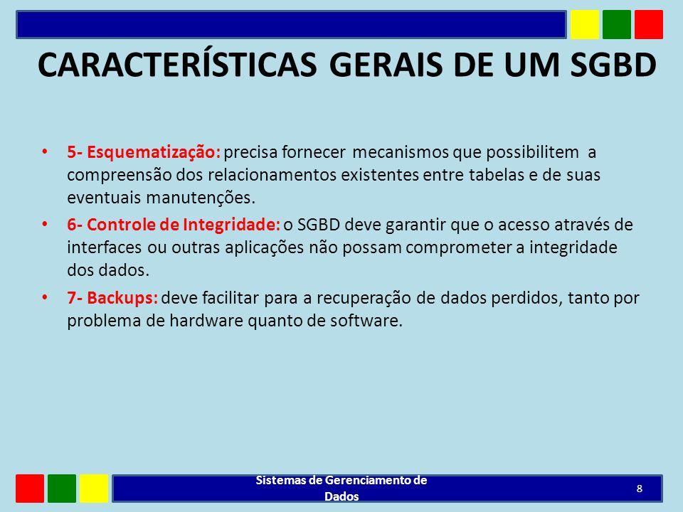 CARACTERÍSTICAS GERAIS DE UM SGBD