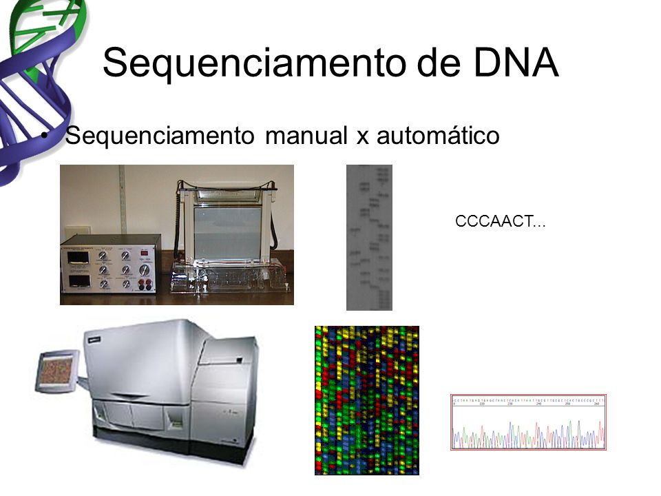 Sequenciamento de DNA Sequenciamento manual x automático CCCAACT...