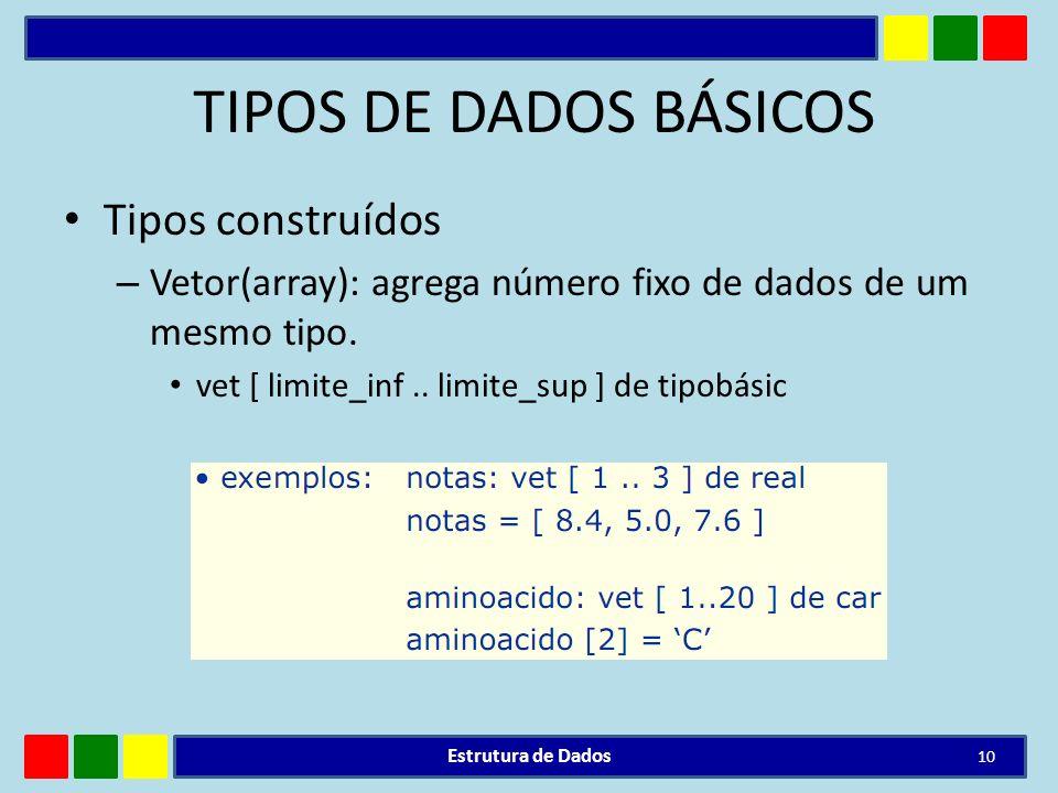 TIPOS DE DADOS BÁSICOS Tipos construídos