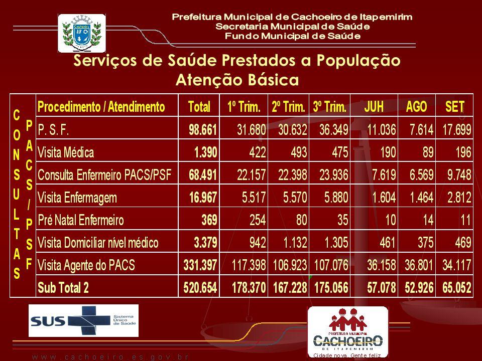Serviços de Saúde Prestados a População