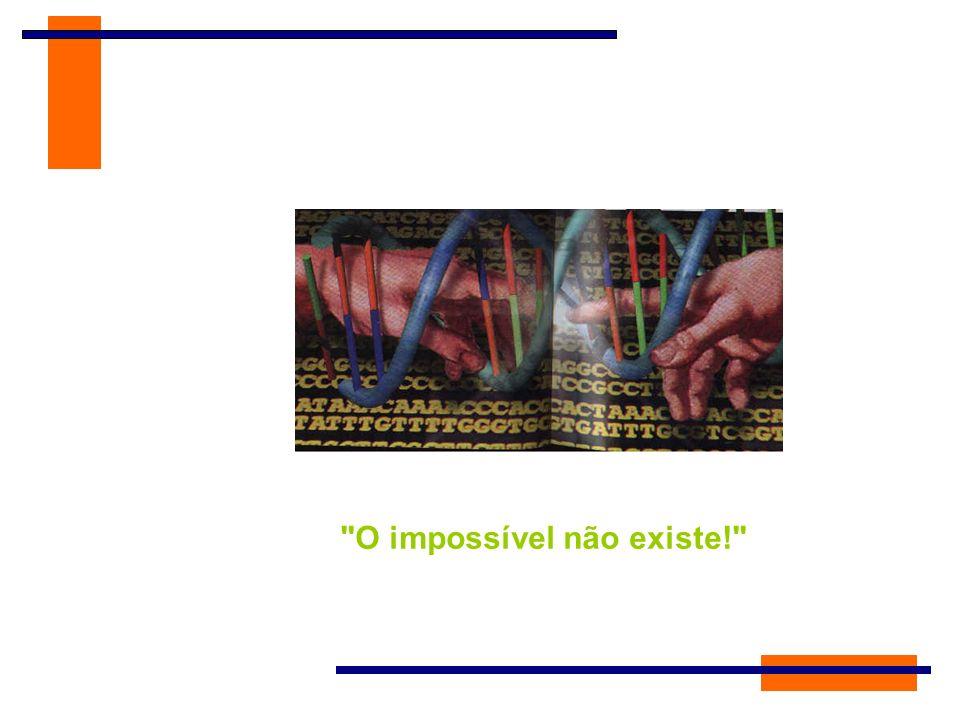 O impossível não existe!