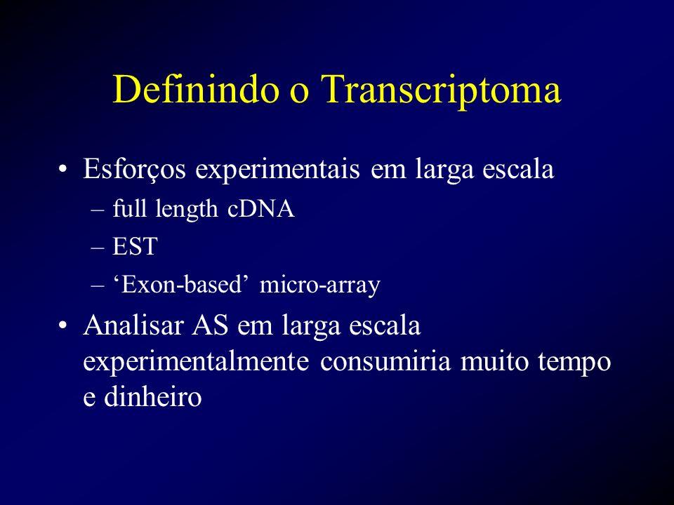 Definindo o Transcriptoma