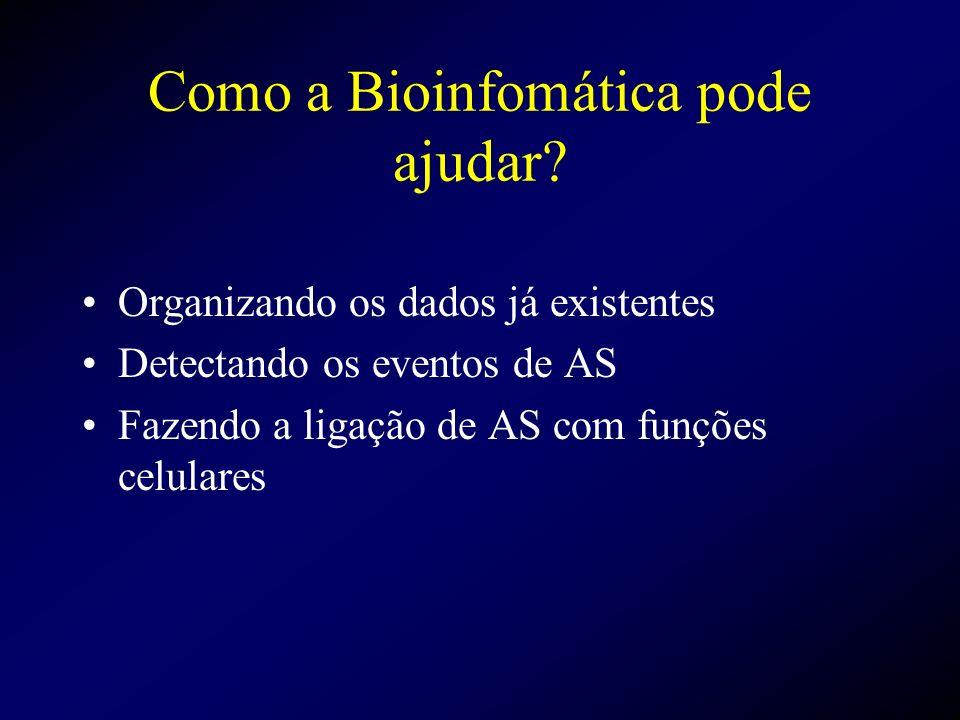 Como a Bioinfomática pode ajudar