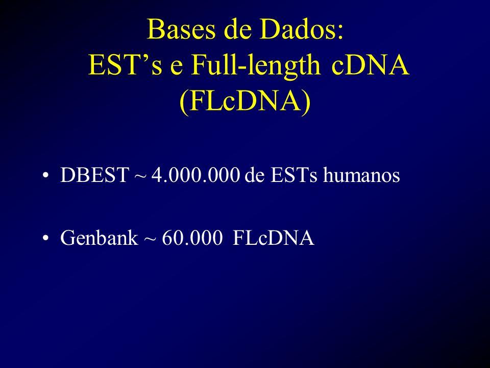 Bases de Dados: EST's e Full-length cDNA (FLcDNA)