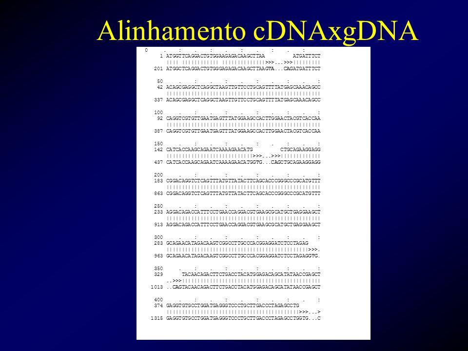 Alinhamento cDNAxgDNA