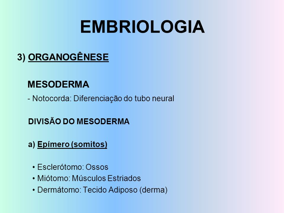 EMBRIOLOGIA 3) ORGANOGÊNESE MESODERMA