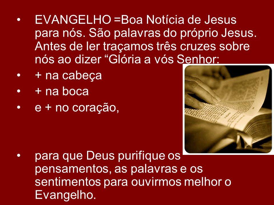EVANGELHO =Boa Notícia de Jesus para nós. São palavras do próprio Jesus. Antes de ler traçamos três cruzes sobre nós ao dizer Glória a vós Senhor: