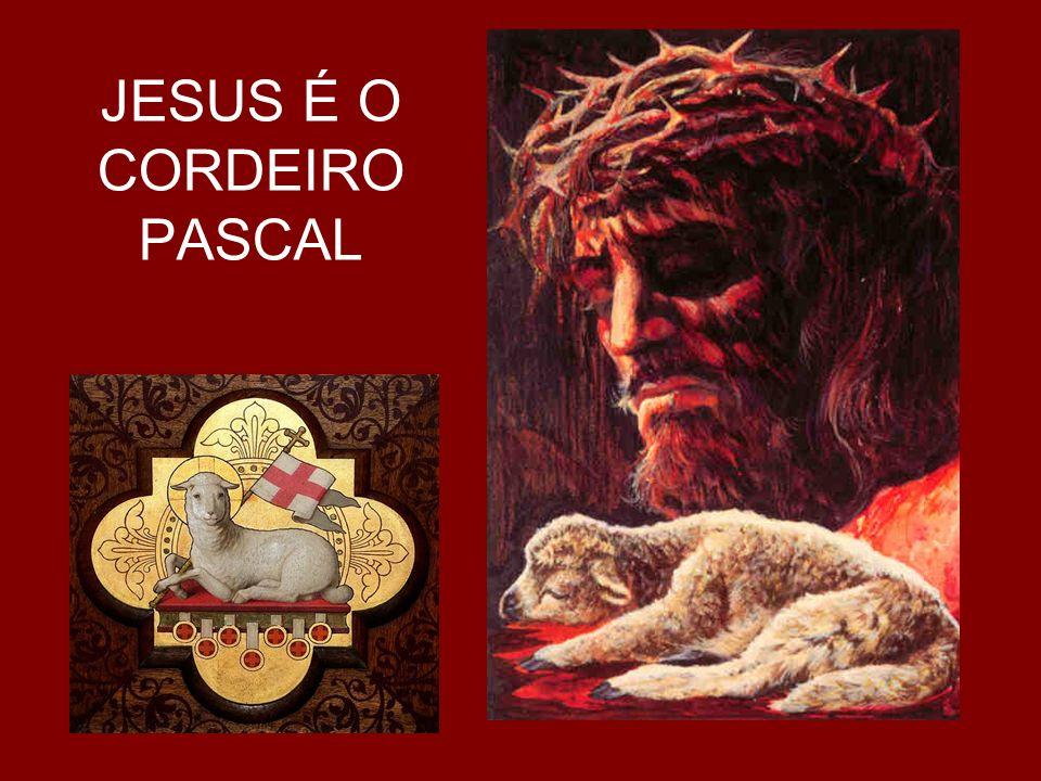 JESUS É O CORDEIRO PASCAL