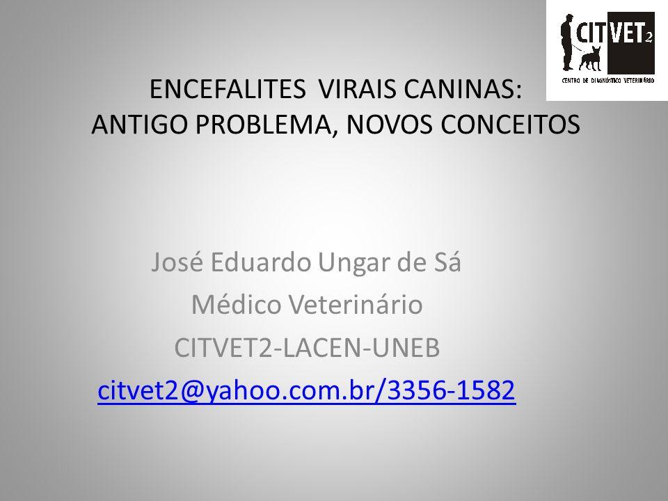 ENCEFALITES VIRAIS CANINAS: ANTIGO PROBLEMA, NOVOS CONCEITOS