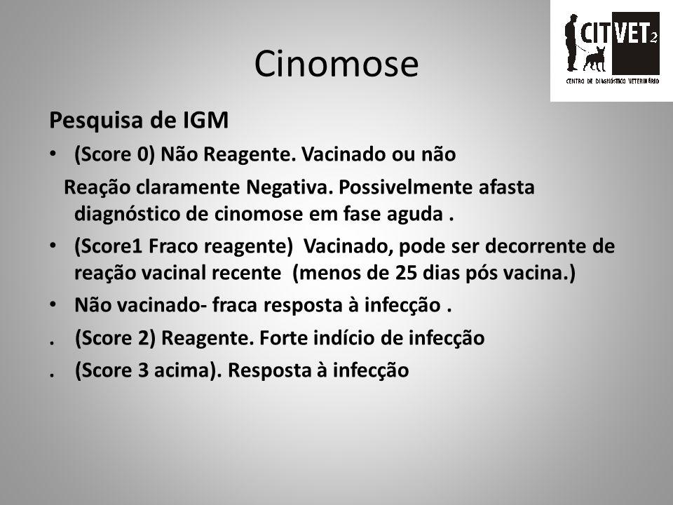 Cinomose Pesquisa de IGM (Score 0) Não Reagente. Vacinado ou não